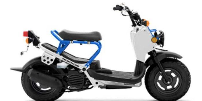 Skuter Matic Honda Ruckus